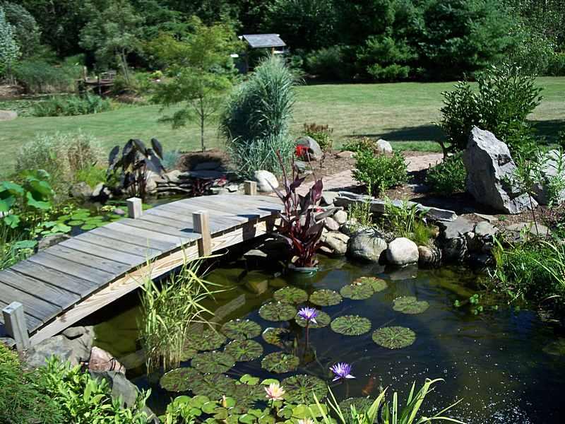 vybudování zahradního jezírka