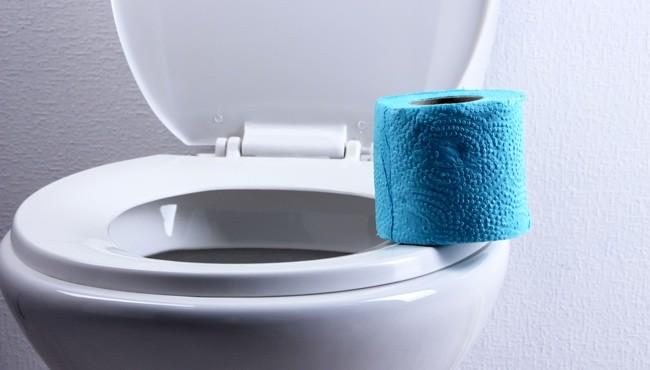 historie a čištění toalet